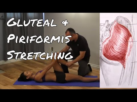 PNF Stretching For Your Glute and Piriformis Muscles