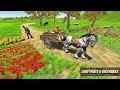 Tuk Tuk Pk Cargo Horse Transport Driving game | games | kids games | cartoon games