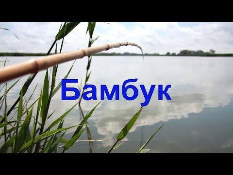 БАМБУК- удочка из Детства  :))) Поплавок тоже :))) Fishing angeln la pesca câu cá 钓鱼 рыбалка