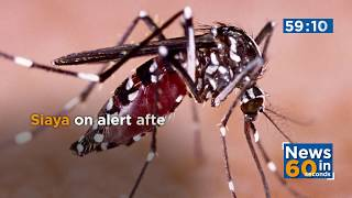 News Update: One person succumbs to rift valley fever in Siaya County,