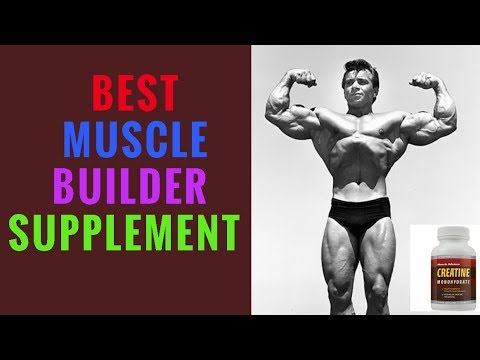 What Is CREATINE Supplement What Does It Do To Your Body By George S Top Product Reviews