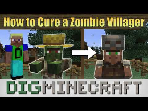 How To Cure A Zombie Villager In Minecraft Youtube