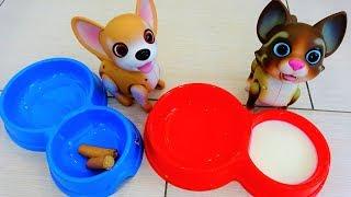 Новые Игрушки Полины! Интерактивные Питомцы Кошечка и Собачка