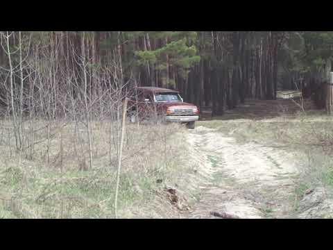 Ford Bronco прогулка в лесу