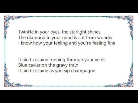 Ian Brown - The Gravy Train Nightmares on Wax Mix Lyrics