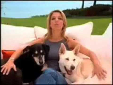 The Loved Dog By Tamar Geller Youtube border=