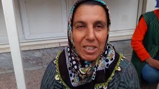 Video Mahmut Coşkun - Boyabata Tekirdağdan mantar ithali