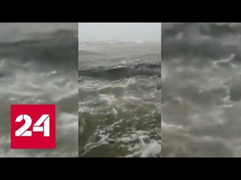 """Теряющий силу """"Дориан"""" утопил аэропорт на Багамах - Россия 24"""