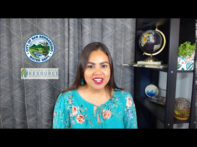 Virtual Lesson: Watersheds