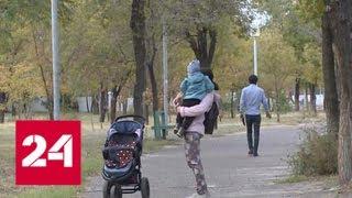 В Волгоградской области увеличат пособия для молодых мам - Россия 24