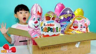 [캐나다에서 온 선물상자] 어떤 선물이? 라임이의 서프라이즈 에그 킨더조이 초콜릿 장난감 놀이 Giant egg LimeTube & Toy 라임튜브