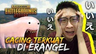 Gambar cover DAPAT SURPRISE DARI CACING TERKUAT DI ERANGEL!! - PUBG Mobile Indonesia