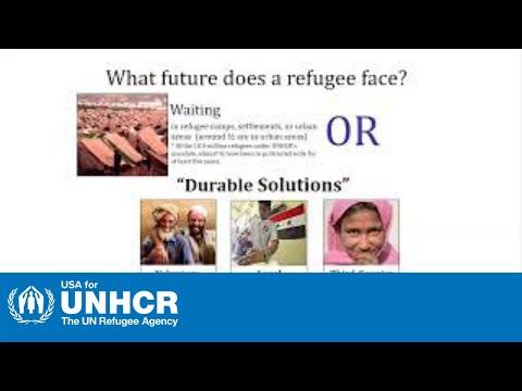 About UNHCR