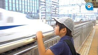 東海道新幹線の通過を見に行きました【がっちゃんの電車で行こう!シリーズ】 thumbnail
