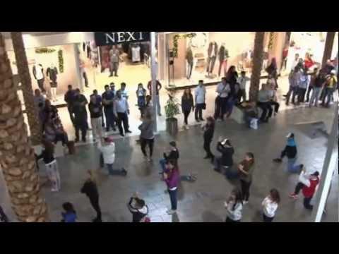 British Embassy's flash mob on UAE National Day