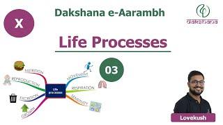 Dakshana | Aarambh | Class X | Biology | Life Processes | L03 | Lovekush