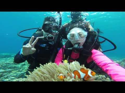 Scuba Diving - Samal and Talikud Island : Davao Phil