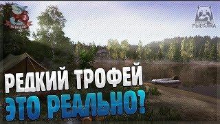 Ловля трофейного Карася Золотого ● Рыбалка и фарм на оз. Комариное ● Русская рыбалка 4