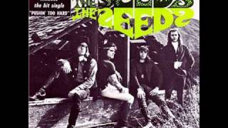 THE SEEDS -PUSHIN