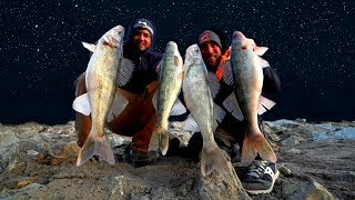 EPIC Night Spillway Fishing for FAT Walleye!!! (Catch & Cook)