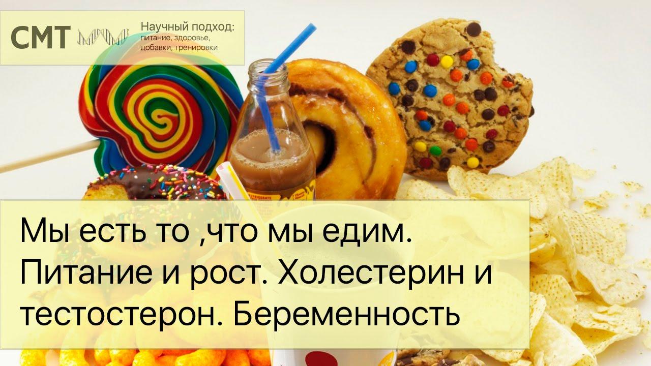 Мы есть то, что мы едим. Питание и физическое развитие. Холестерин и тестостерон. Беременность
