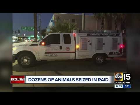 Dozens of animals seized in raid from Phoenix shelter
