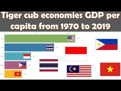 Tiger Cub Economies