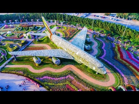 Dubai City 2018 – Dubai Miracle Garden