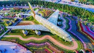 Dubai City 2018 - Dubai Miracle Garden