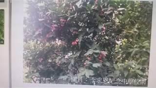 Publication Date: 2018-07-10 | Video Title: 李求恩紀念中學校網、放了我親手種的果樹