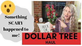 New Finds | Dollar Tree Haul | Christmas Items 2019 | Something Scary Happened To Me At Dollar Tree!