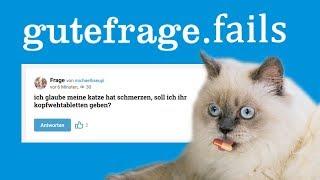 Katze Aspirin geben? - GuteFacepalm.net #12