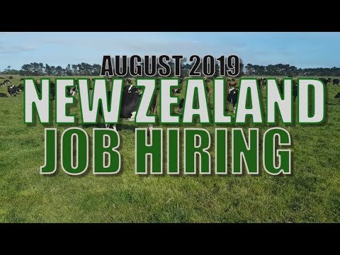 AUGUST 2019 NEW ZEALAND JOB HIRING