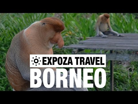 Borneo Vacation Travel Video Guide