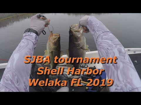 SJBA Tournament Shell Harbor Welaka FL 2019