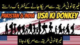 usa ki donkey information in urdu and hindi 2018 U S A ki donkey information hindi. parts 2