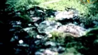 Ishtar - Horchat Hai Caliptus