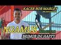 Brimob Ini Happy  Gantangan Kacer Bob Marley Ngamuk Bergetar Hebat  Mp3 - Mp4 Download
