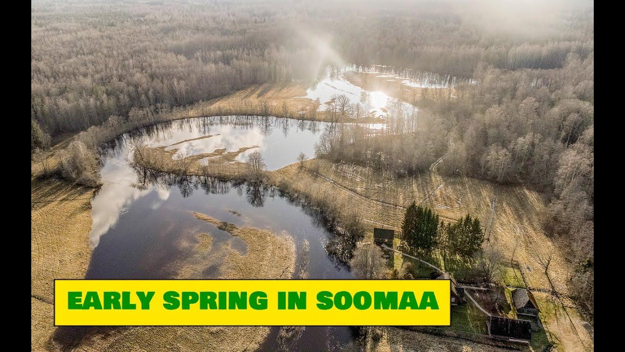 Soomaa in Early Spring / Varakevadine Soomaa - Estonian Nature