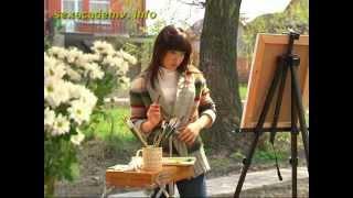 видео Блог девушки Даши