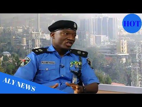 IGP Idris: Police reacts to Senate list of killings in Nigeria - Daily Post Nigeria