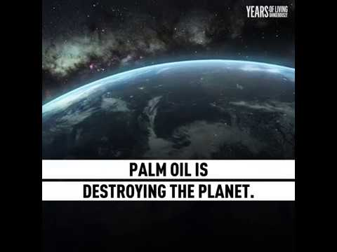 #WeCanSolveThis: Good Palm Oil
