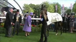 Queen has Royal Ascot Winner ESTIMATE  in the Queens Vase 2012