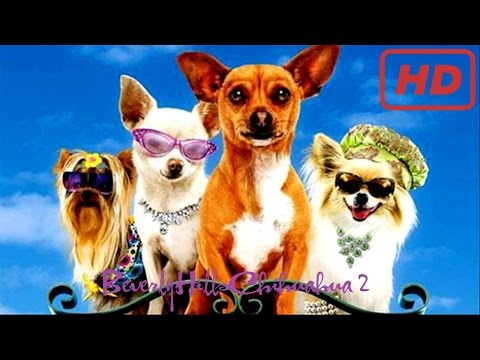 Beverly Hills Chihuahua 2 - 2011