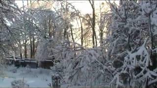 В царстве снега и льда