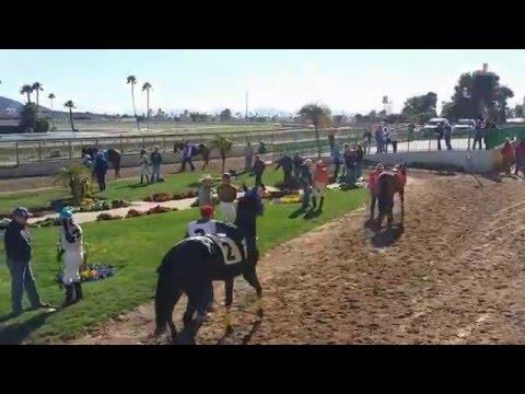 Turf Paradise Race Course and Horse Racing (Phoenix, Arizona)