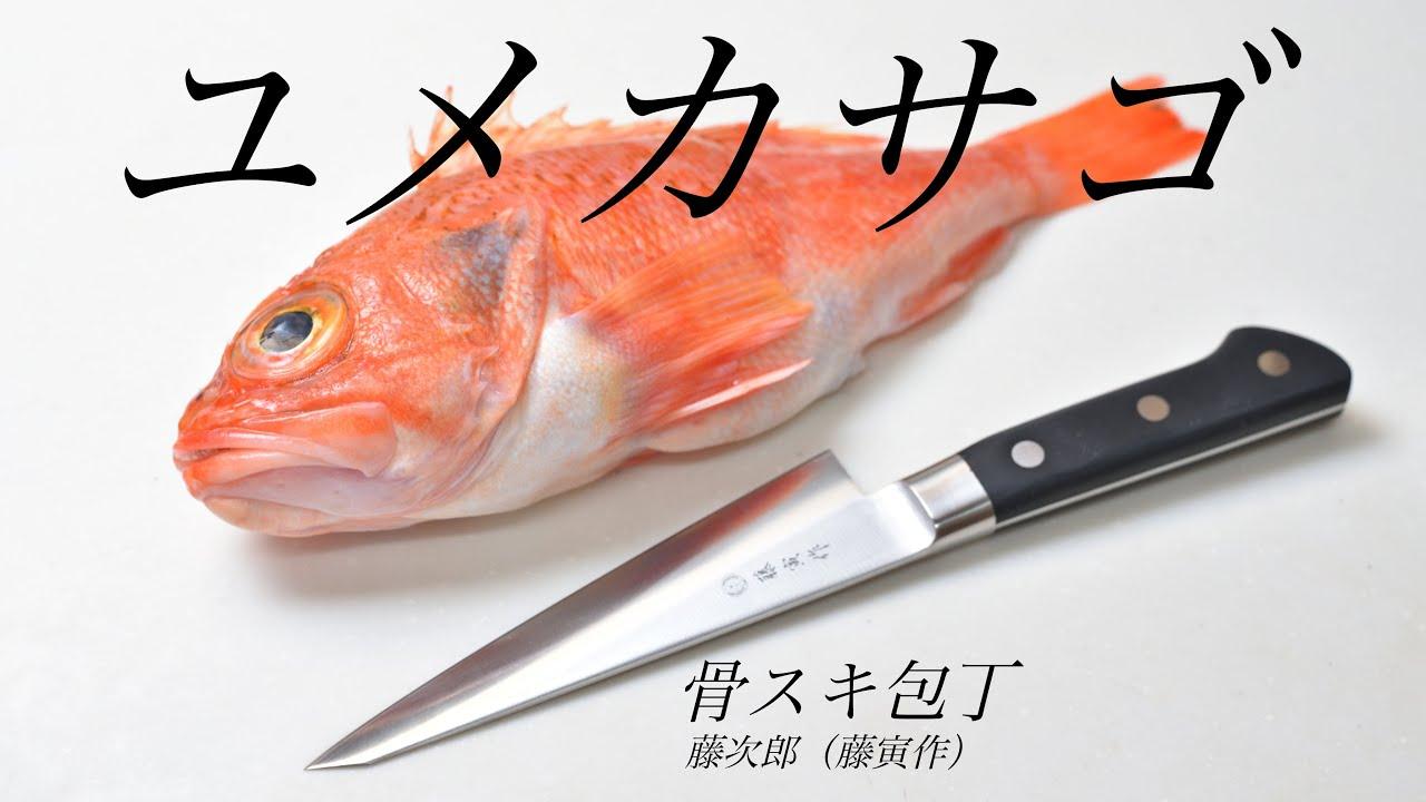 【捌きASMR】プロの魚屋も使う包丁 骨スキ包丁でユメカサゴを捌く【藤次郎藤寅作】【魚さばき方】