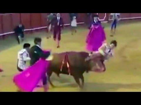 На корриде в Севилье бык поднял матадора на рога