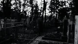 Трейлер фильма боишься ли ты тьмы ?