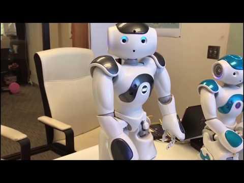 First Impression - SoftBank Robotics' Nao V6